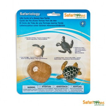 safariltd-life-cycle-of-a-green-sea-turtle-662316-0