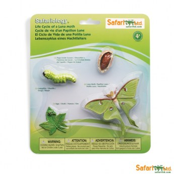 safariltd-life-cycle-of-a-luna-moth-663516-0